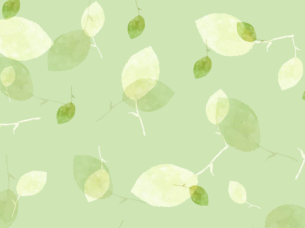 小清新绿叶墙纸图片