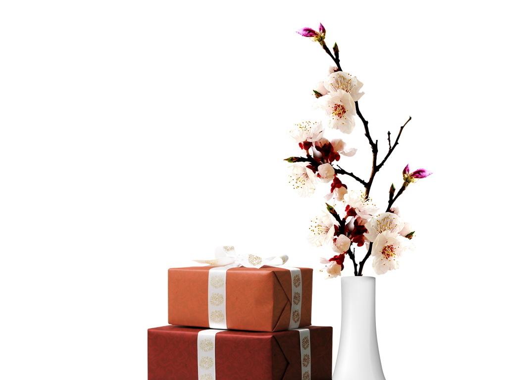 花瓶梅花-插花广告