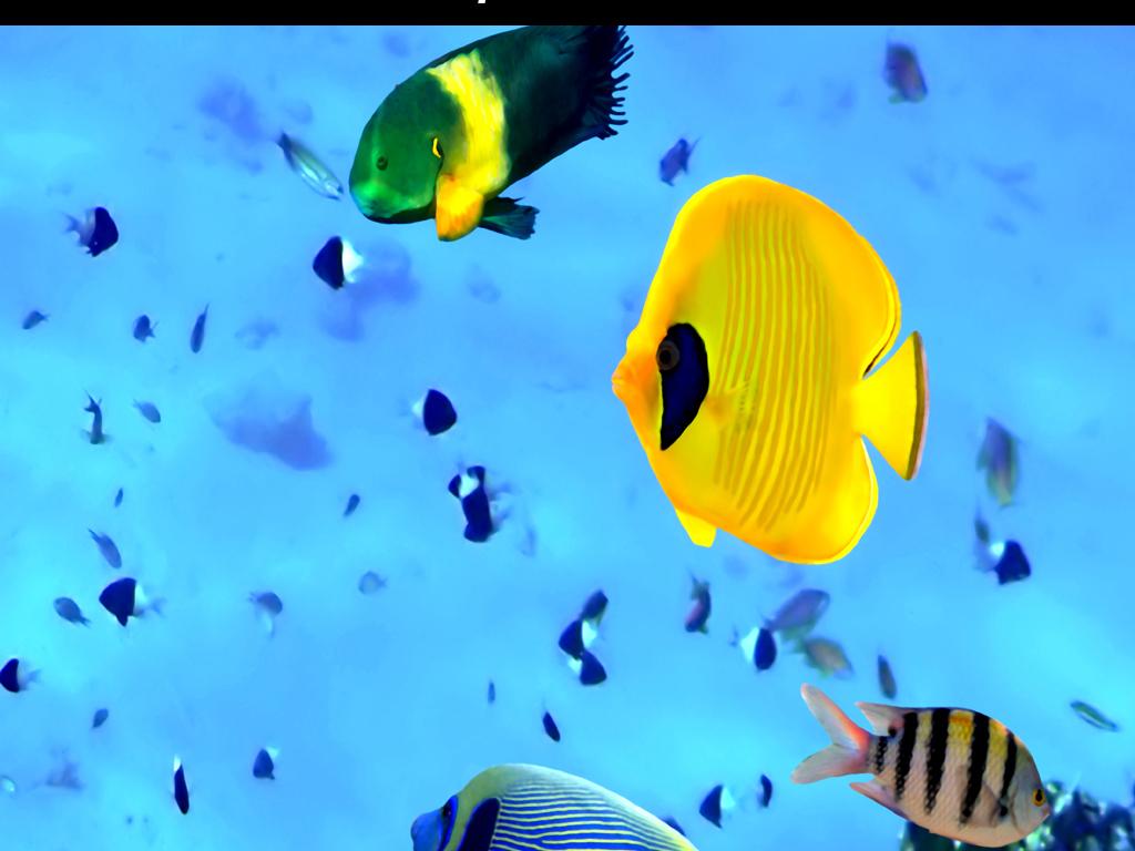 海底世界珊瑚热带鱼3d立体玄关背景墙