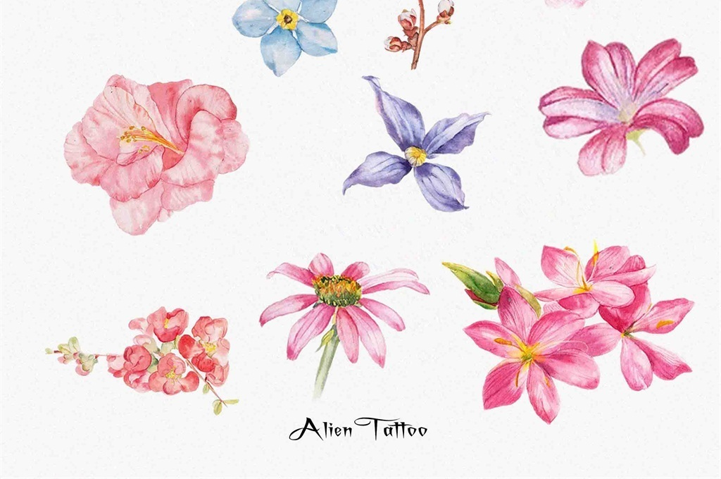 花蕾叶子水彩手绘
