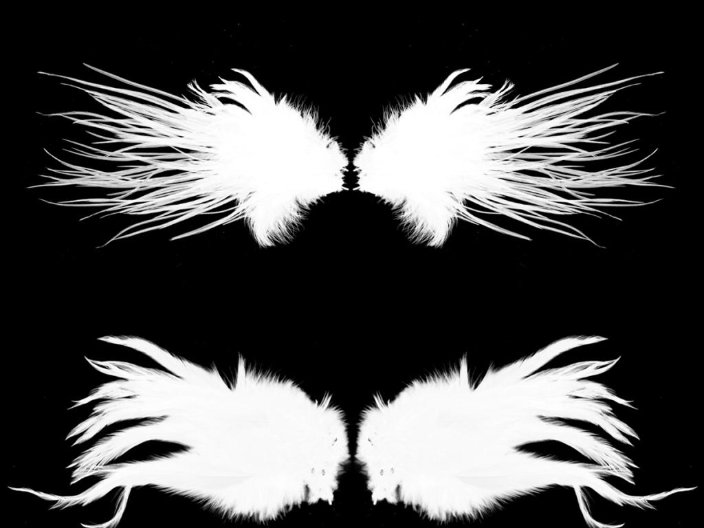 我图网提供精品流行高清ps动物翅膀笔刷可安装下载素材下载,作品模板源文件可以编辑替换,设计作品简介: 高清ps动物翅膀笔刷可安装下载 位图, RGB格式高清大图,使用软件为 Photoshop 7.0(.psd)