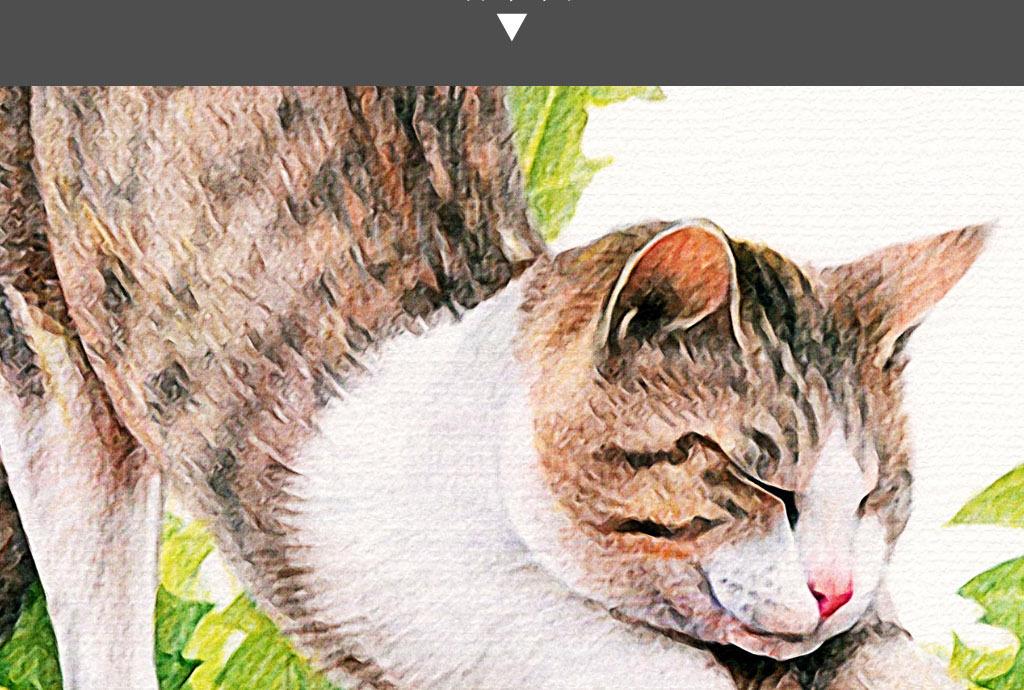 蒲公英菊花伸懒腰小猫手绘小清新家居装饰画