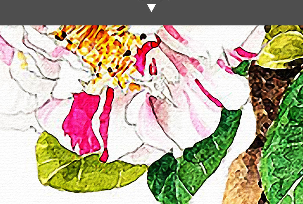 山茶花现代日韩手绘小清新治愈系现代装饰画