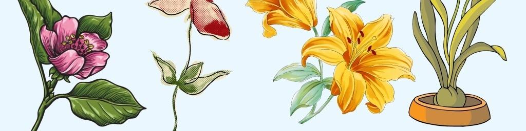 手绘设计元素植物彩绘设计素材植物素材植物生长植物设计素材葫芦娃