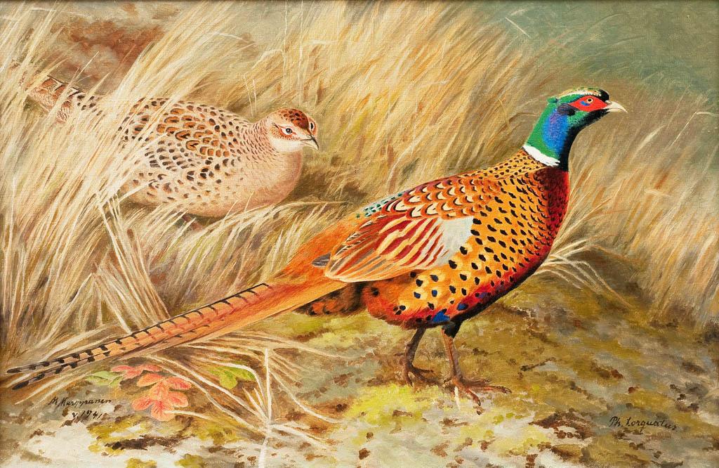 古典油画动物雉鸡装饰画背景墙