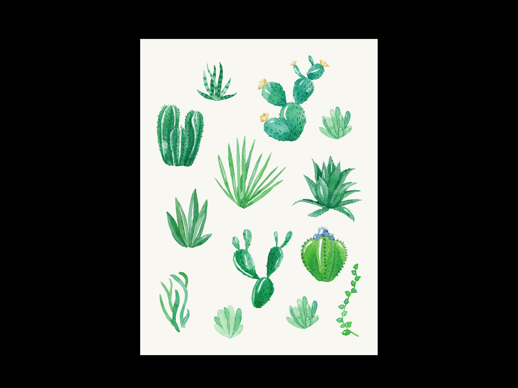 手绘复古欧式多肉植物小盆栽仙人掌绿色仙人球芦荟