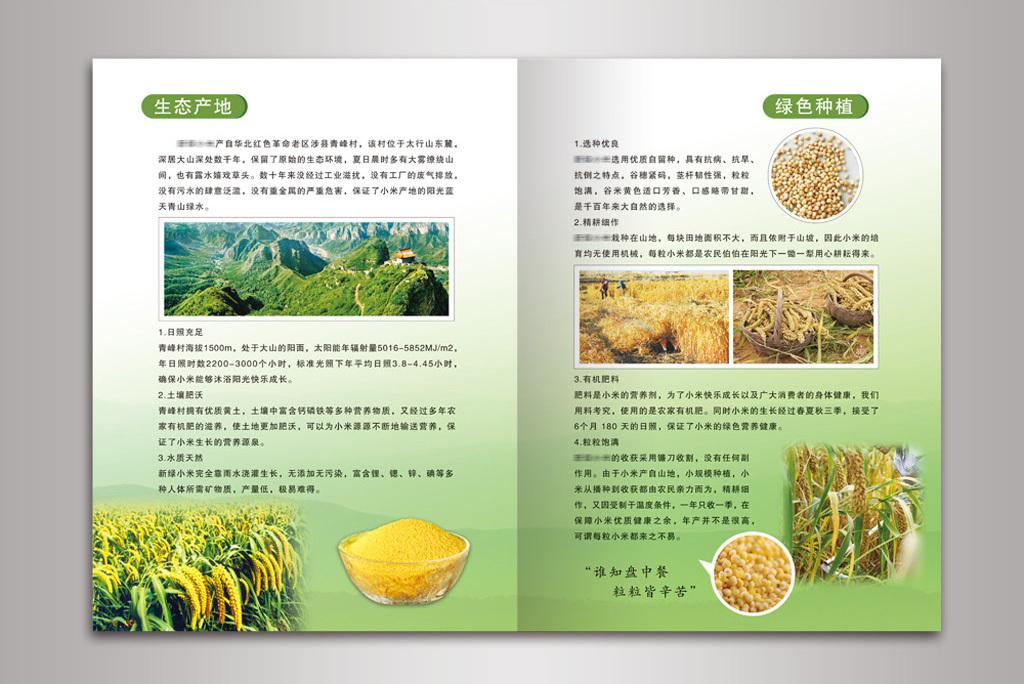 平面|广告设计 画册设计 产品画册(整套) > 绿色食品产品手册绿色有机图片