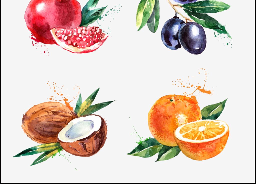 我图网提供精品流行手绘矢量水果葡萄柠檬石榴橄榄水彩写意插画素材下