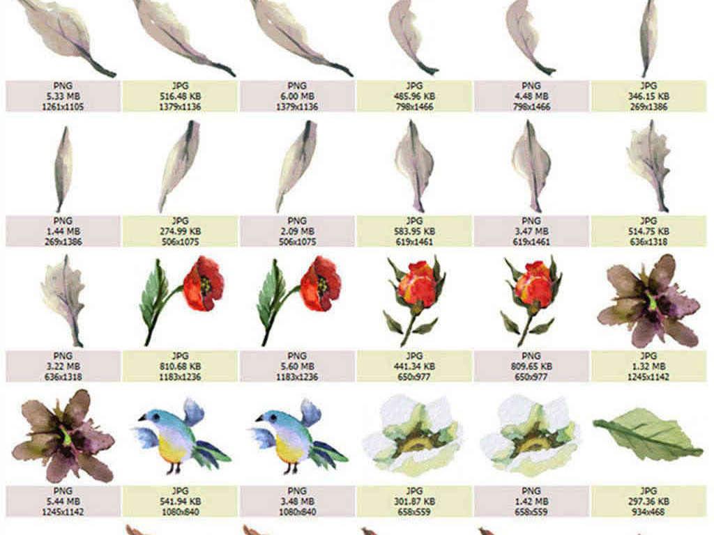 手绘花纹边框花边花朵花卉植物png素材