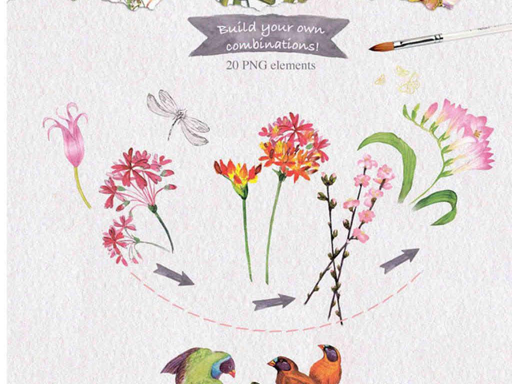 墙纸壁纸花边边框手绘花朵图案手绘t恤图案3d手绘