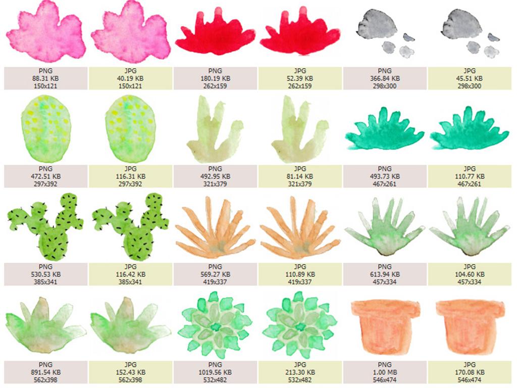 多肉植物夏日盆栽印花