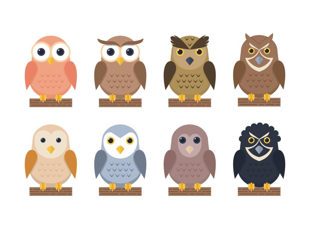 卡通猫头鹰矢量素材猫科owl图片