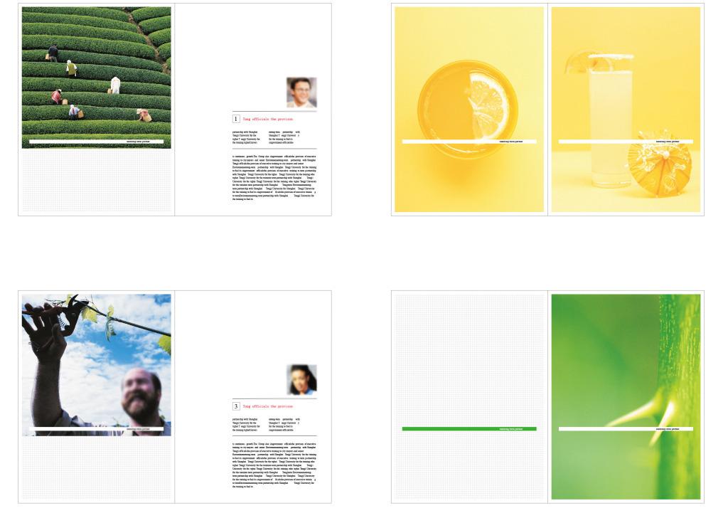 农业绿色食品画册杂志简洁元素插图扉页图片设计素材图片