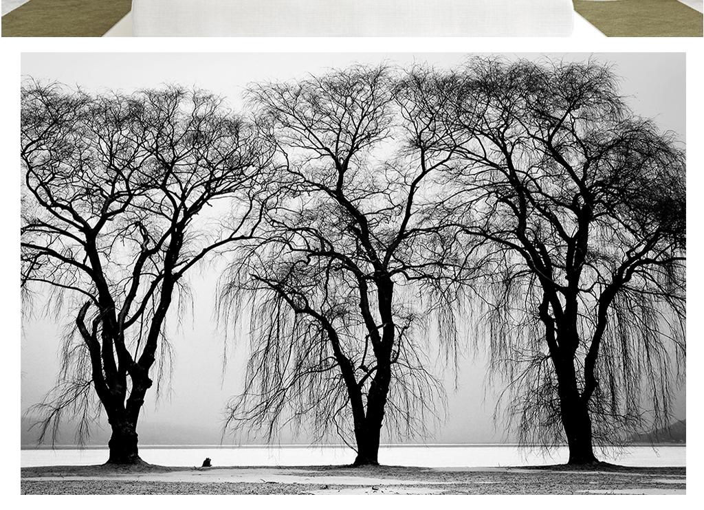 手绘大树落叶壁画