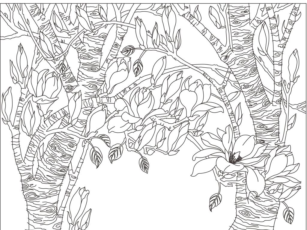 玉兰花背景图