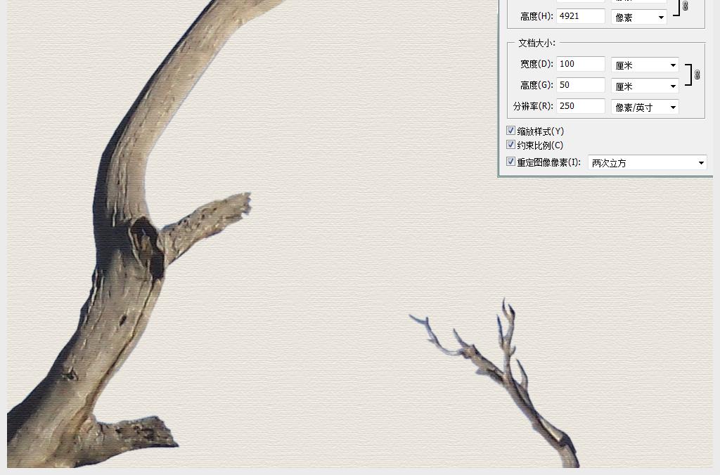新中式枯木树木装饰画无框画