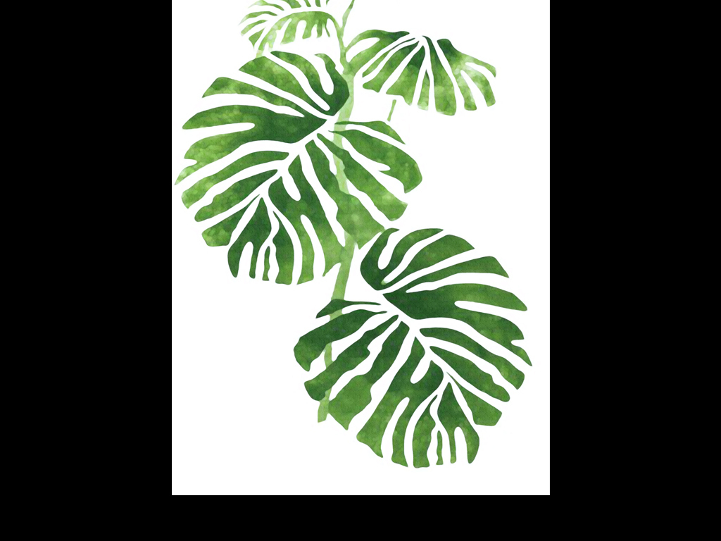 龟背竹植物素描手绘盆栽室内装饰画人物装饰画抽象装饰画风景装饰画