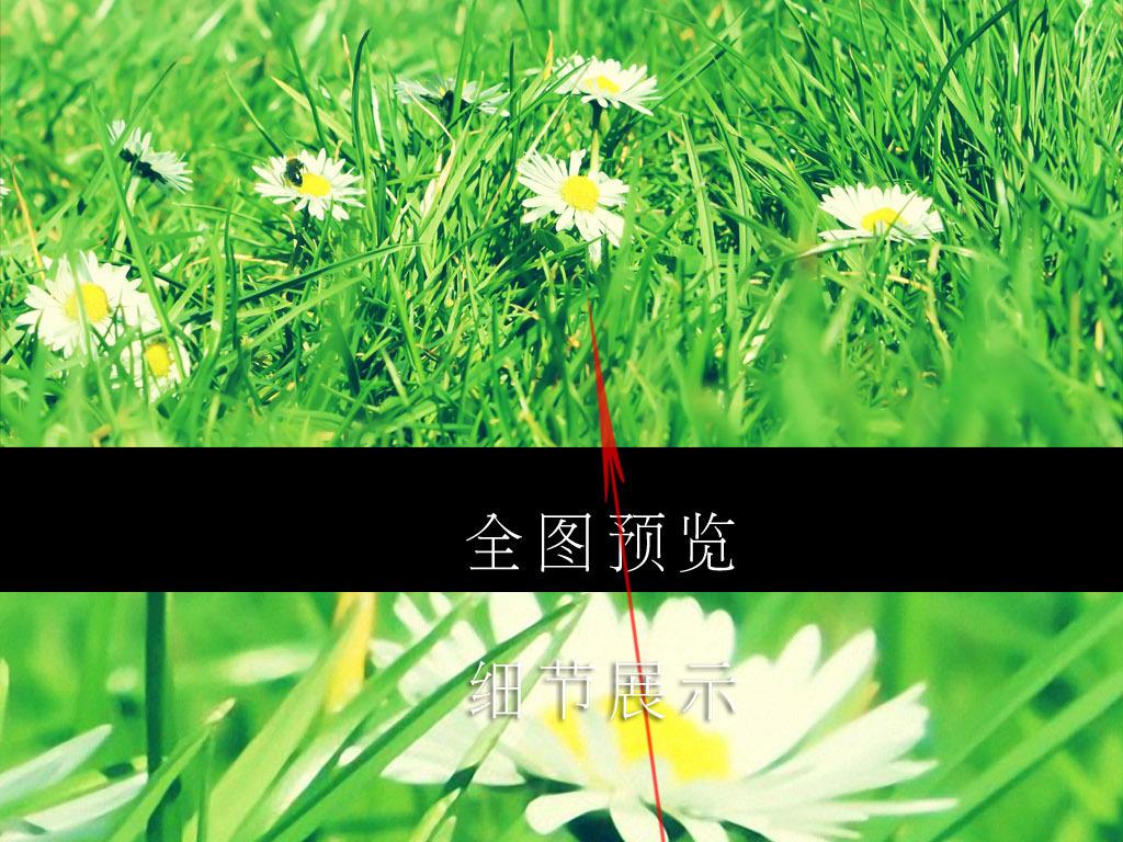 壁纸墙纸图片绿色环保绿色桌面背景图片绿色食品绿色