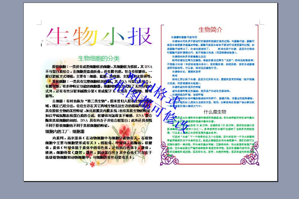 生物电子小报模板(b4)4