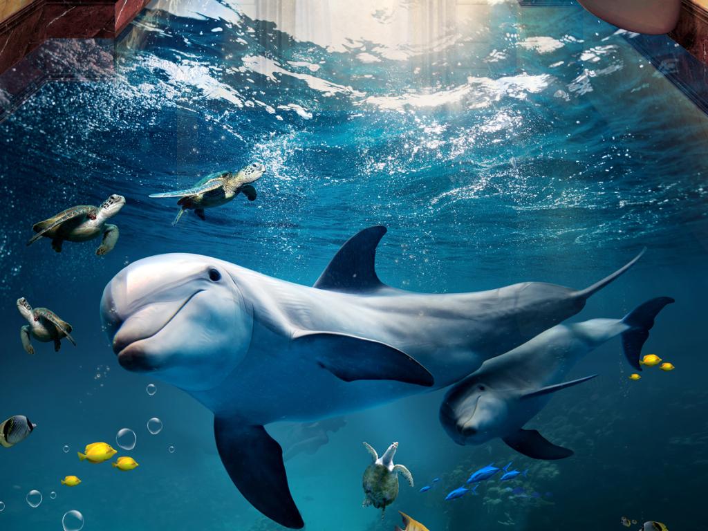 海豚母子情深海底世界3d立体浴室客厅地板