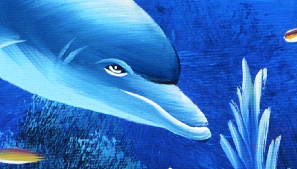 超清海底世界装饰画(图片编号:15713491)_动物图案无