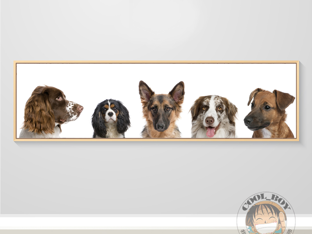 北欧简约时尚名贵宠物狗动物可爱装饰画