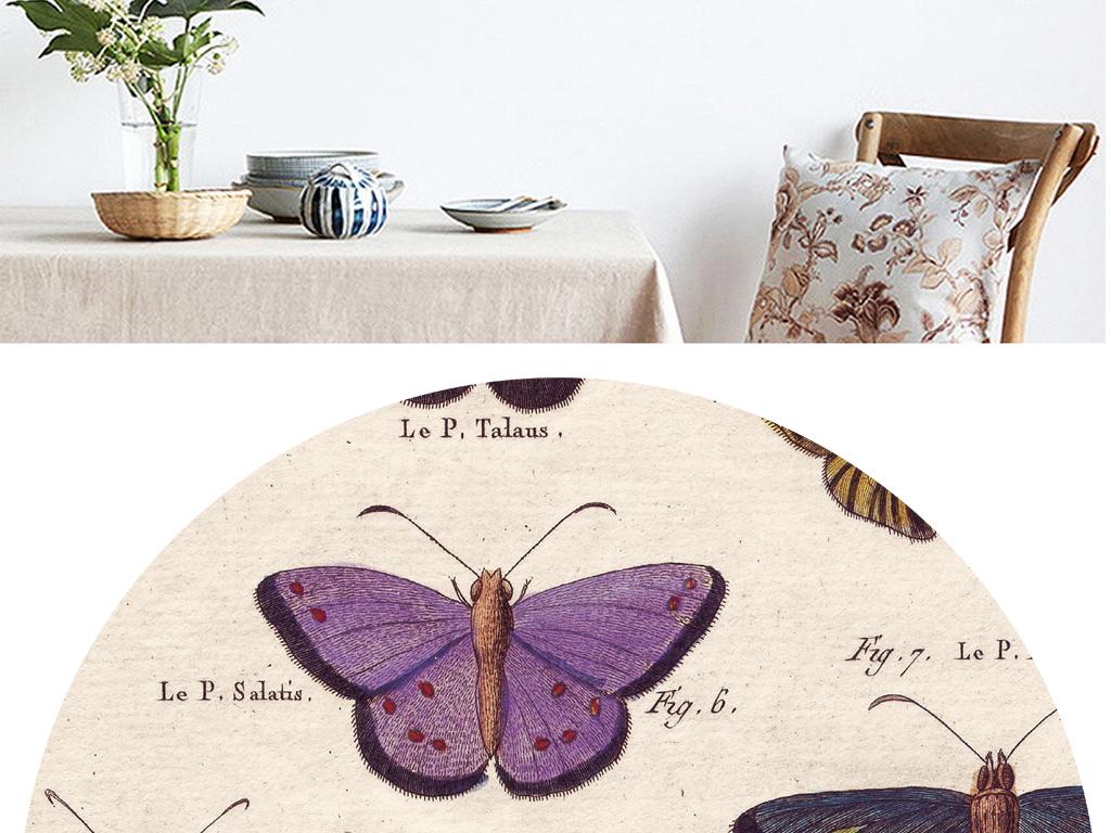 背景墙|装饰画 无框画 动物图案无框画 > 现代简约欧式风格蝴蝶小样无