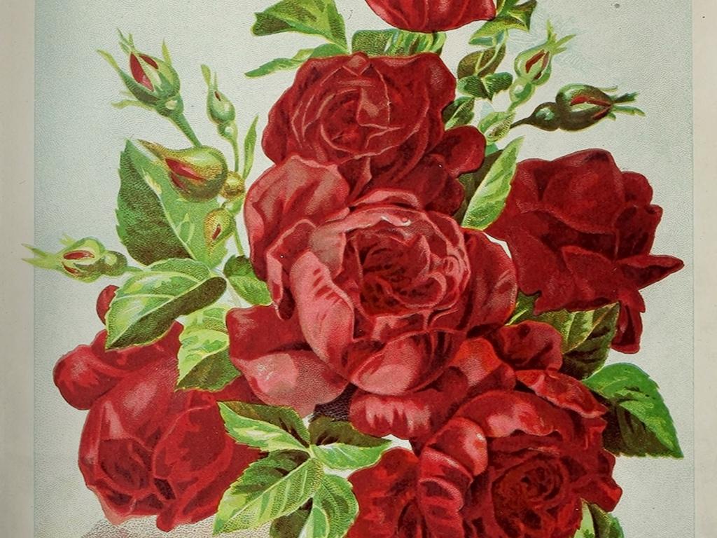 欧式复古红玫瑰花卉静物油画玄关过道