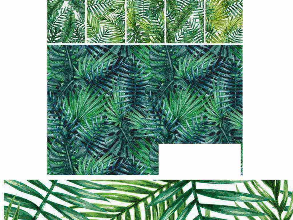 热带雨林芭蕉绿色树叶植物热带植物矢量树叶素材热带矢量素材绿色植物