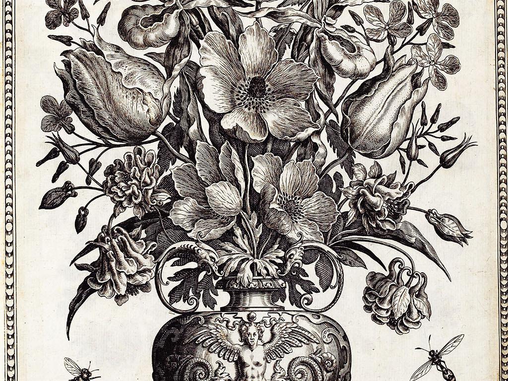 高清素描花卉花瓶昆虫玄关