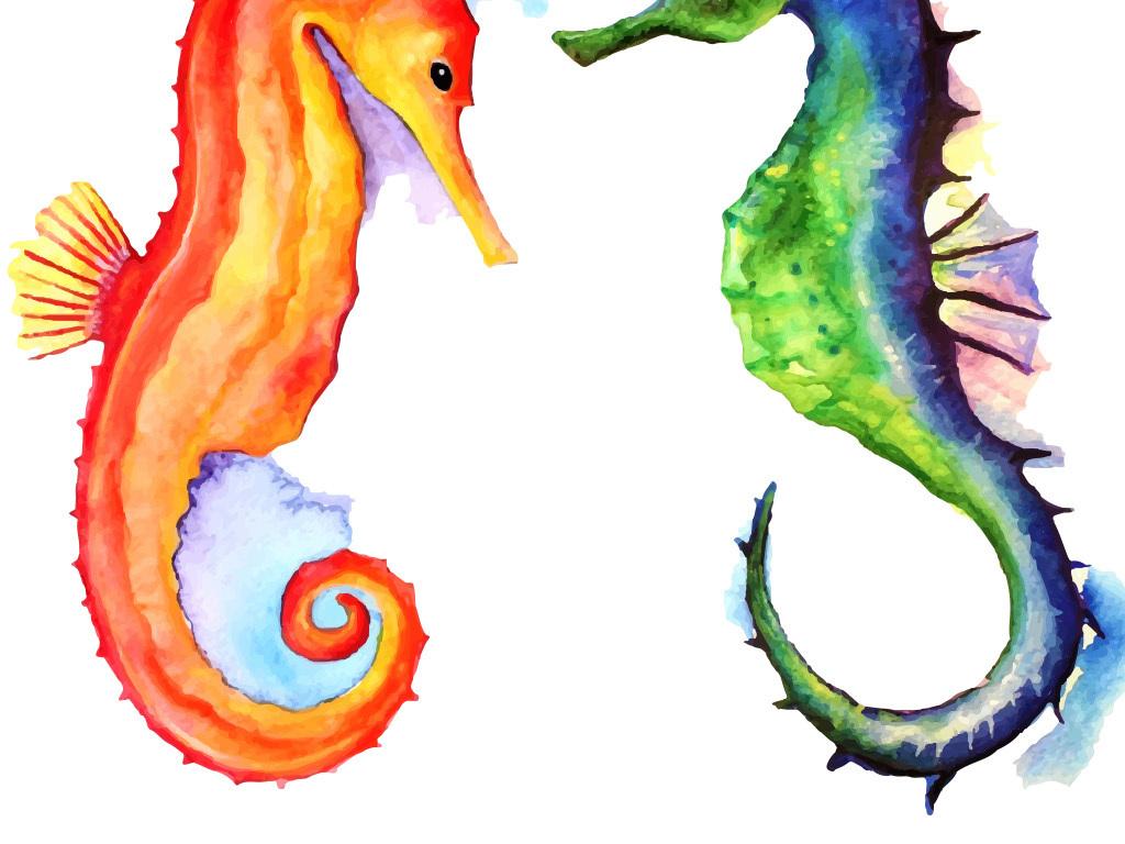 手绘水彩矢量海马无框画(图片编号:15780915)_动物无