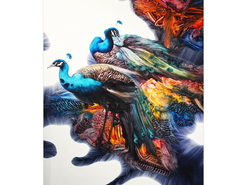 背景墙|装饰画 无框画 动物图案无框画 > 抽象油画孔雀  版权图片