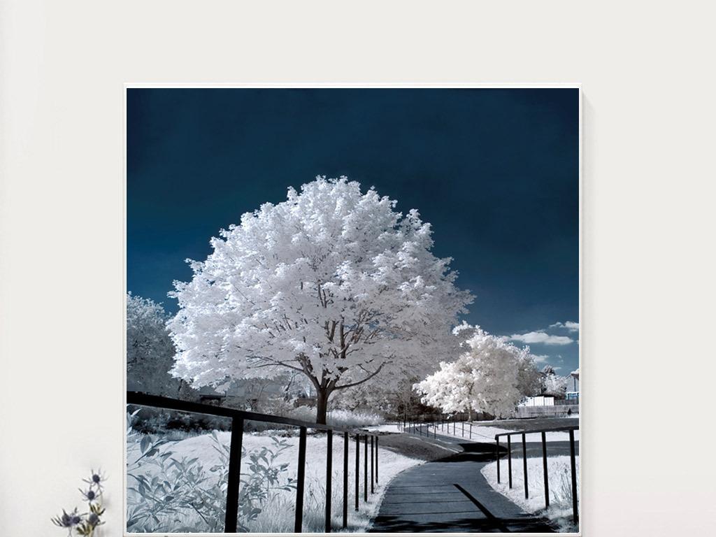 樱花树雪景简约无框画图片