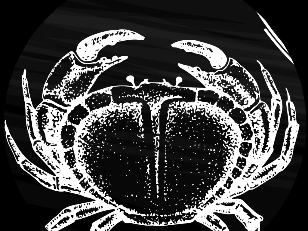 3d立体欧美手绘背景黑色海鲜海鲜背景龙虾手绘餐饮餐饮背景餐饮手绘黑图片