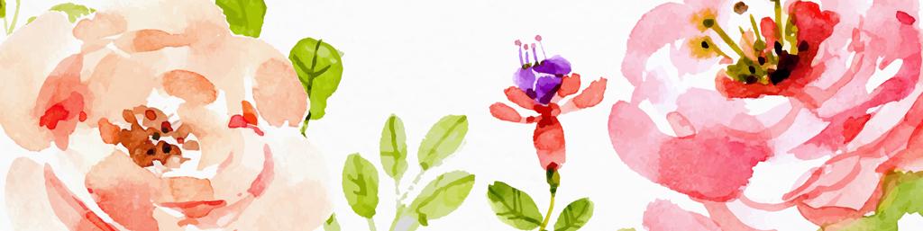 简单手绘古风铅笔画玫瑰花