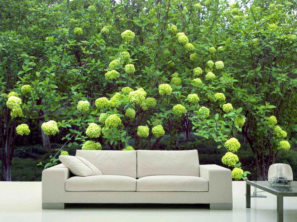 绿色绣球花唯美风景实景高清室内背景墙壁画
