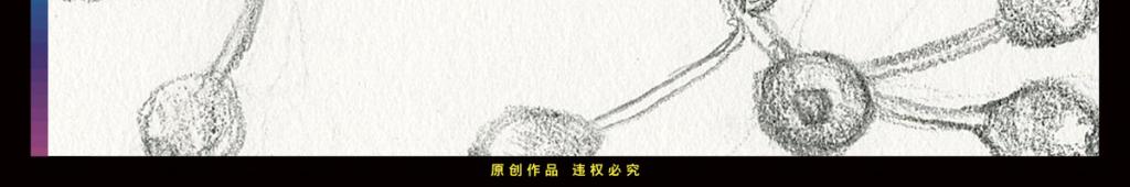 简笔画藤蔓牵牛花标本插画风格手绘无框画酒店情人节爱情铅笔