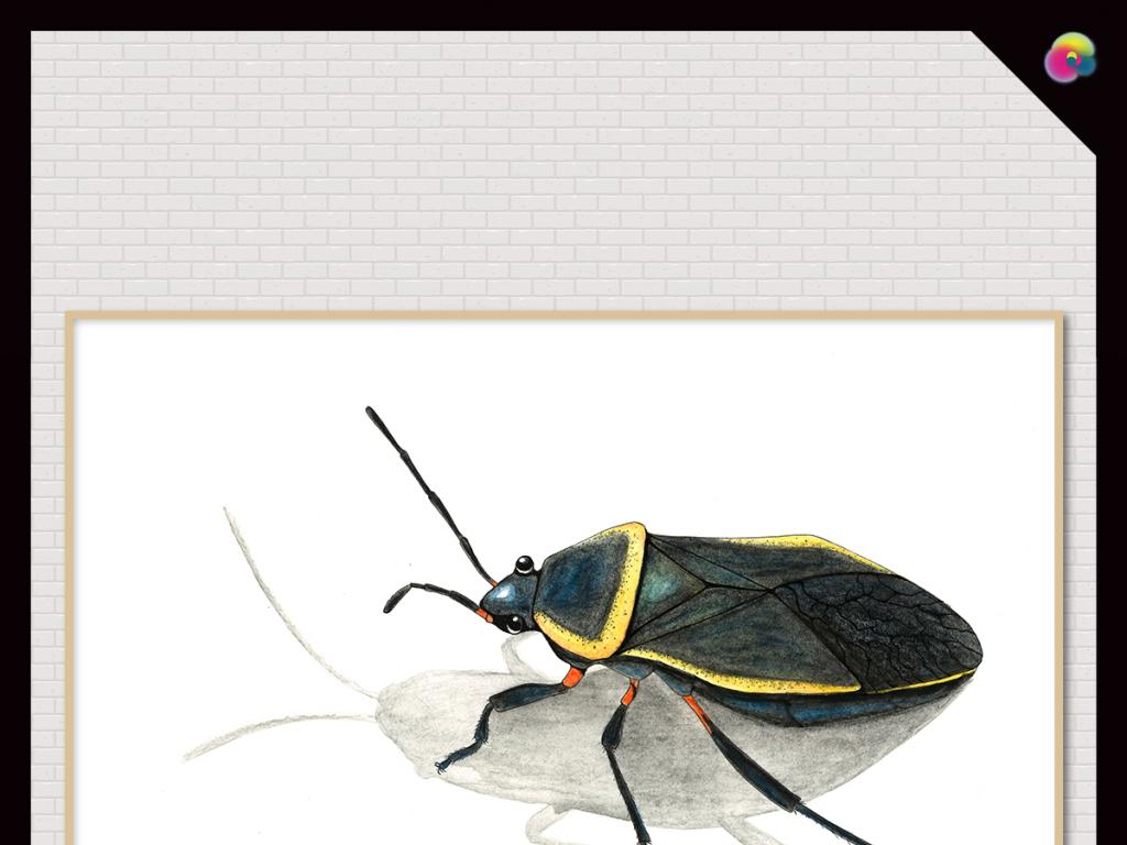 式手绘复古怀旧昆虫素描装饰画插画
