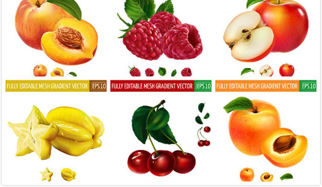 猕猴桃                                  卡通水果
