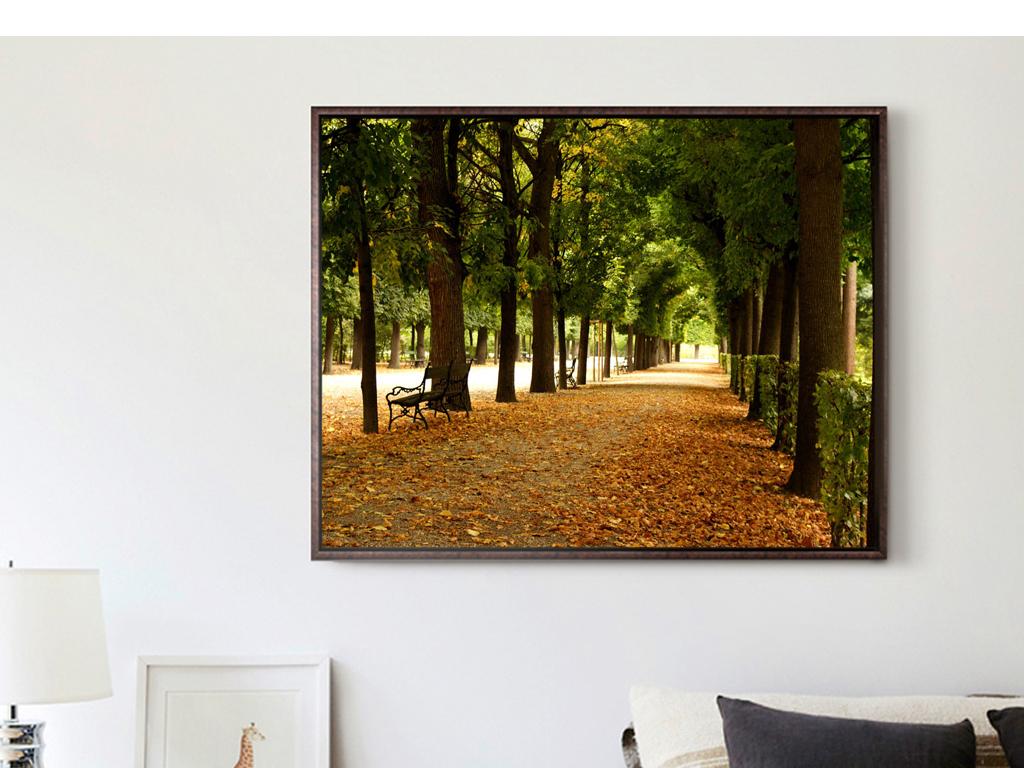 背景墙|装饰画 无框画 风景无框画 > 巨幅风景摄影森林树木过道落叶