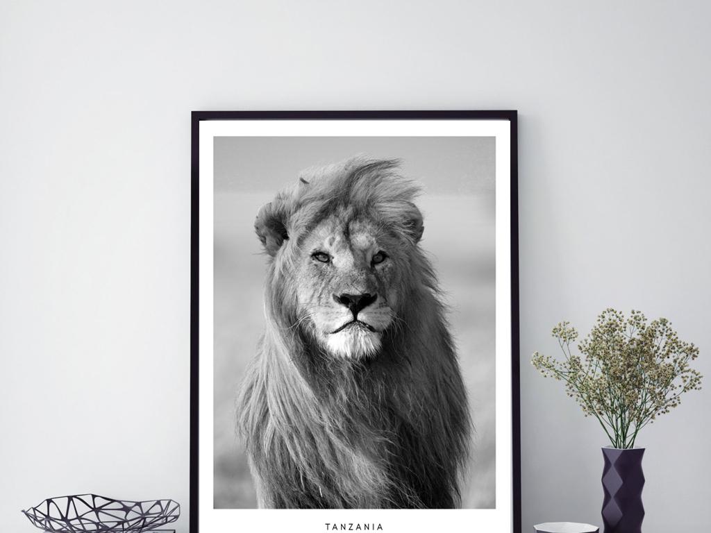 狮子动物北欧怀旧风格黑白装饰画