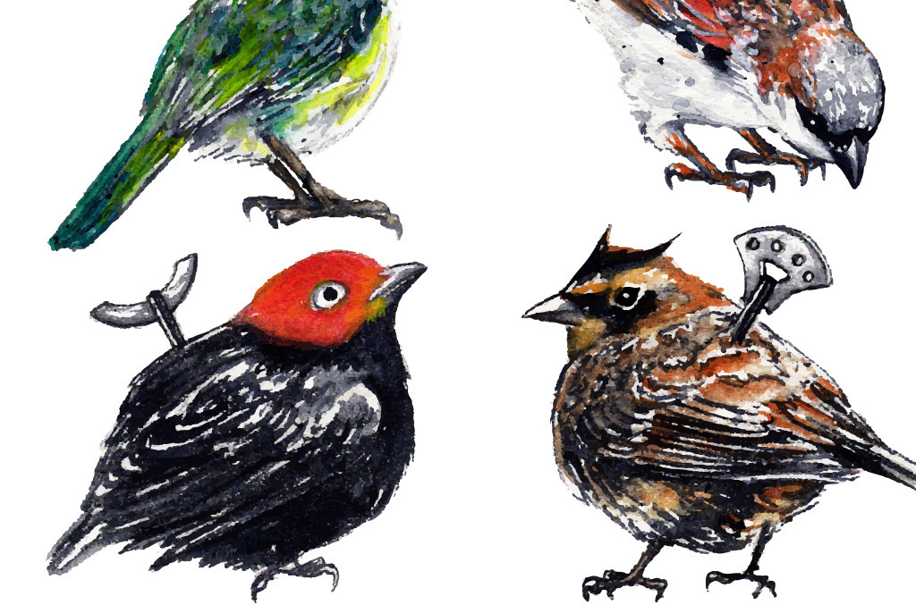 简单水粉画怎样画-小鸟手绘水彩画现代简约室内装饰画无框画