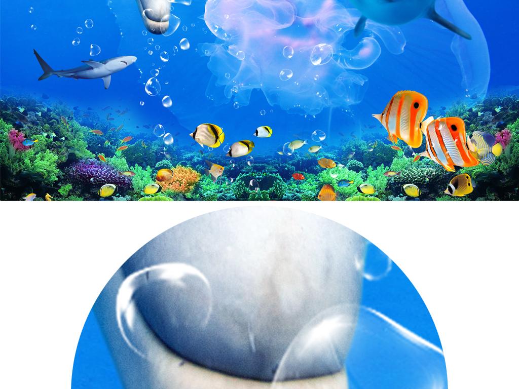 海豚有颜色的简笔画