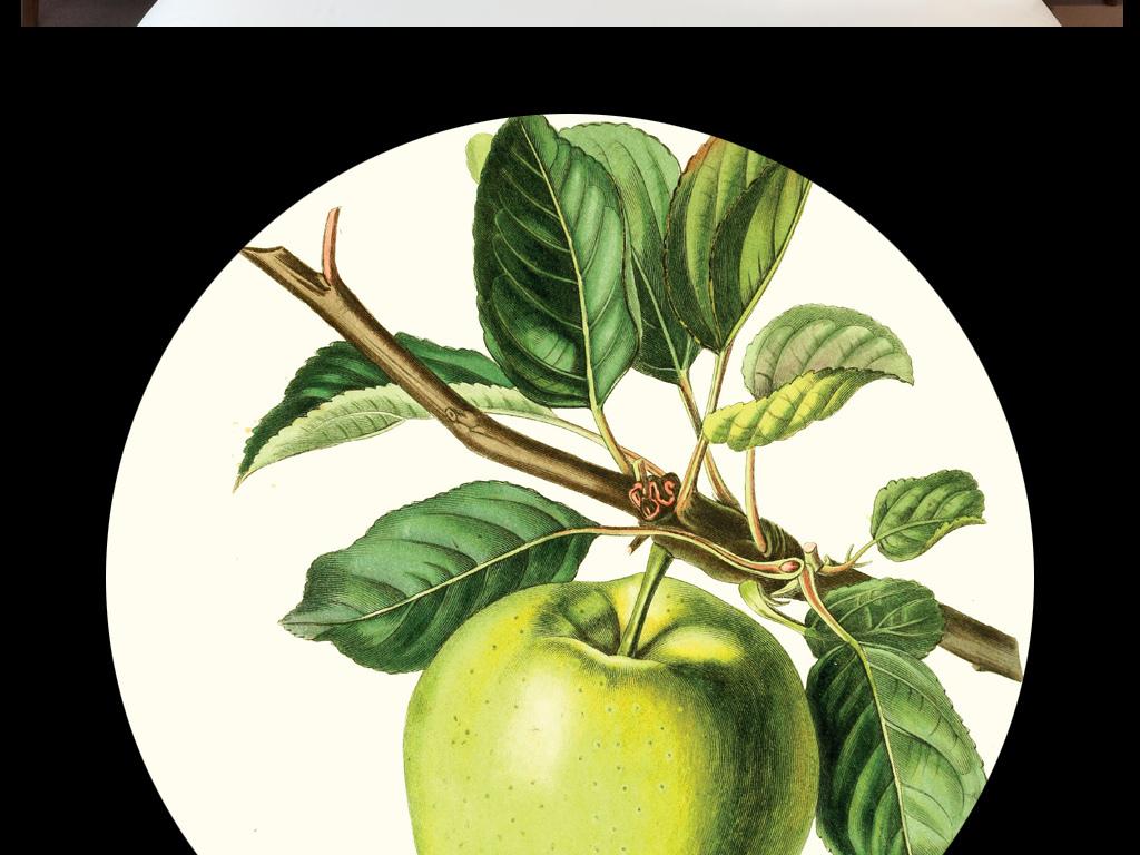 现代简约水彩手绘小清新森系装饰画立体水果
