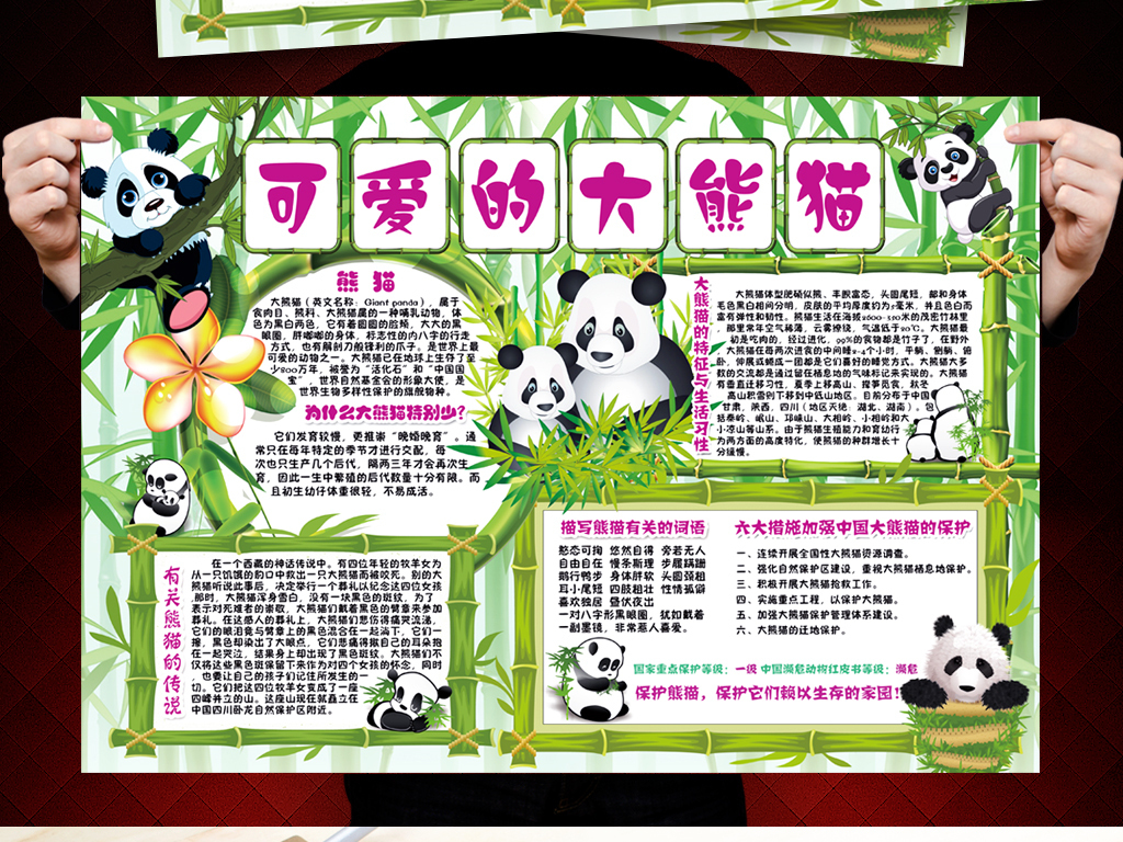 我图网提供精品流行保护熊猫小报保护动物环保电子手抄小报素材下载,作品模板源文件可以编辑替换,设计作品简介: 保护熊猫小报保护动物环保电子手抄小报 位图, CMYK格式高清大图,使用软件为 Photoshop CS6(.psd) 保护珍稀动物小报 保护小动物小报 大熊猫手抄报