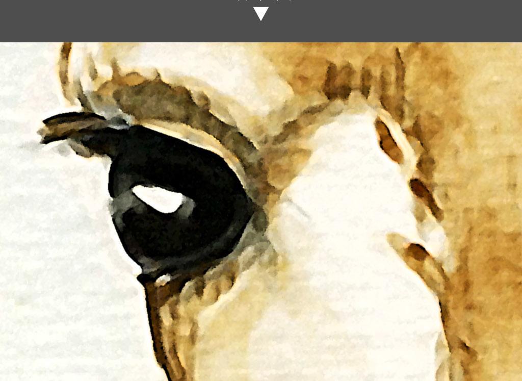长颈鹿头手绘北欧简约水彩现代家居装饰画图片