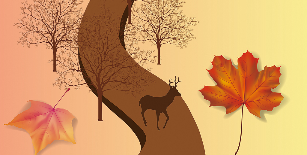 3d矢量卡通手绘小鹿枫叶粉色渐变背景墙