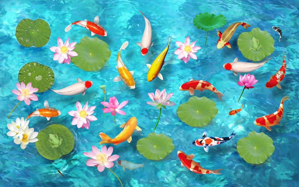 荷叶荷花金鱼池塘水池水塘