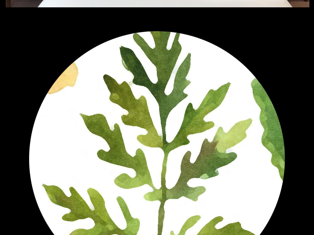 高清手绘龟背竹