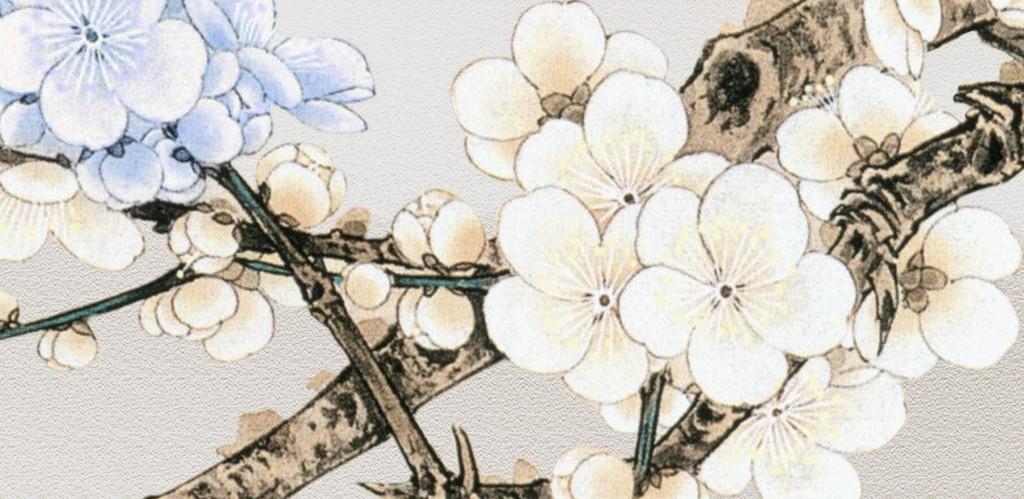 国画梅花手绘花鸟(图片编号:15857281)_花卉壁画_我